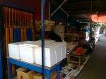 Box wadah ikan asin sunu (tag name from makassar) atau ikan kerapu